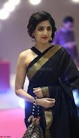 Poonam Kaur Saree New Pics 002.jpg