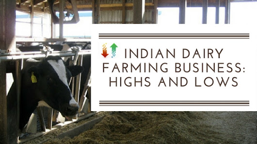 Indian Dairy Farming Business: Highs and Lows
