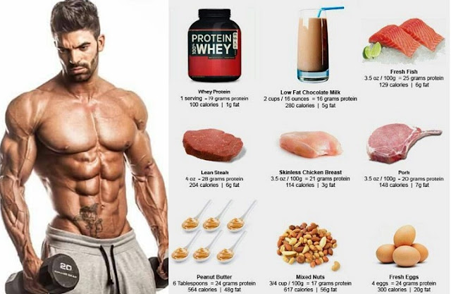 Top 5 Sources Of Protein