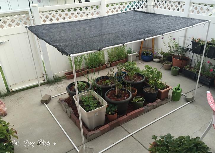 Diy Freestanding Shade Canopy For Garden The Joy Blog