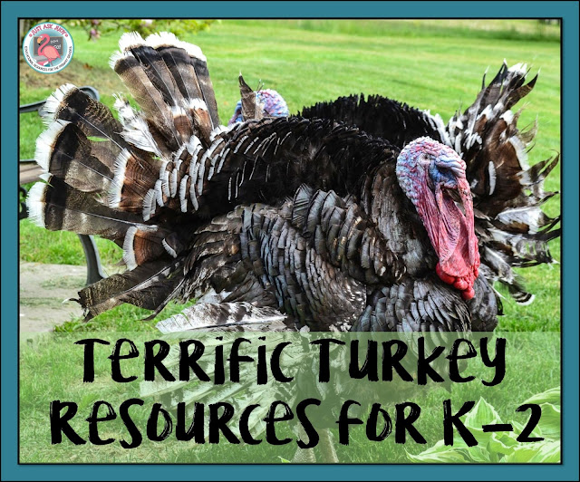 Check out these turkey and Thanksgiving themed resources (including a free download) for kindergarten through second grade.