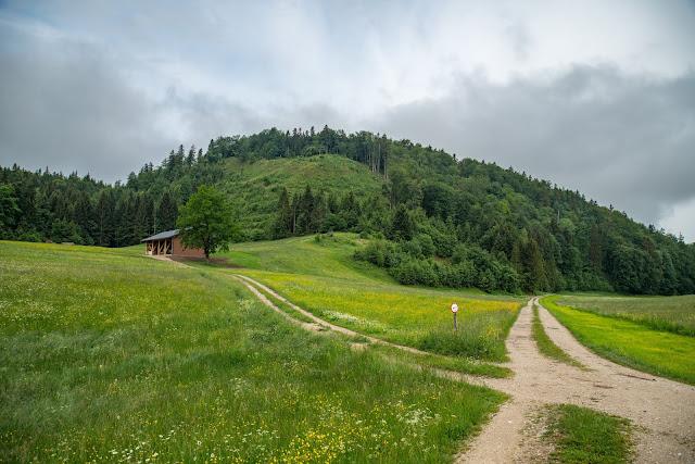 Strumbergspitze und Metzgersteig Wanderung Faistenau – Ebenau  Wandern FuschlseeRegion 03