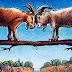 """""""Két kecske megy a hídon…""""  Egy pszichológia teszt ami megmutatja személyiségünk titkait!"""
