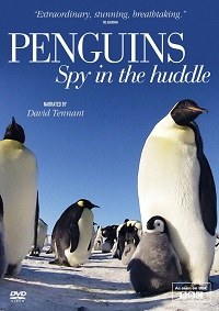 Watch Penguins: Spy in the Huddle Online Free in HD