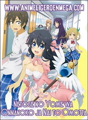 Netoge no Yome wa Onnanoko ja Nai to Omotta: Todos los Capítulos (12/12) [Mega – MediaFire - Google Drive] BD - HDL