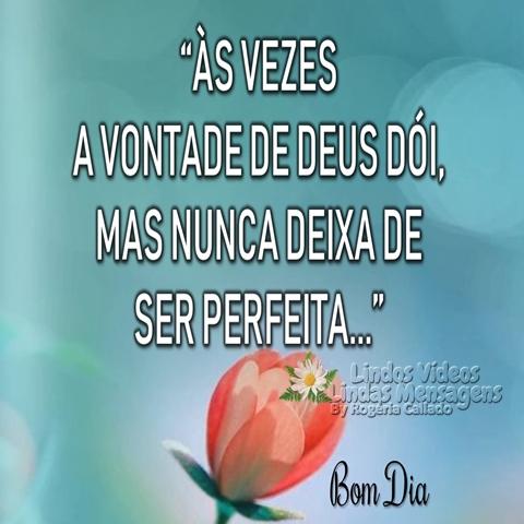 Às vezes  a vontade de Deus dói,  mas nunca deixa de  ser perfeita...