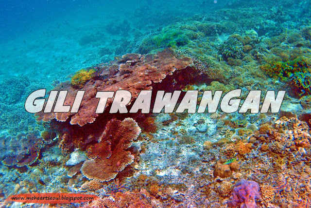 Lombok -  Gili Trawangan | www.meheartseoul.blogspot.com