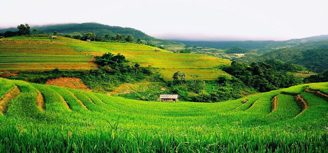 Amazing destinations in the homeland of the U23 players Vietnam 3