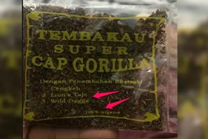 Bahaya Tembakau Gorila