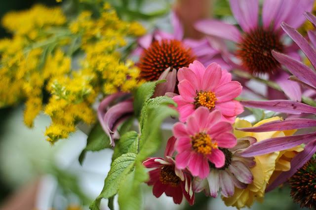 emmanuellericard,fleurs,blog,emmanuellericardblog