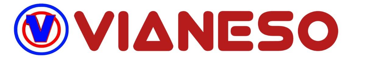 Logo Footer vianeso