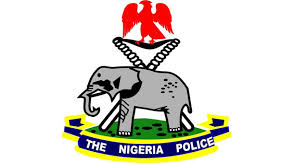 Peace corps, a threat to Nigeria's security – Police IG
