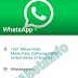 New WhatsApp Update Called Verified Business Account in Progress