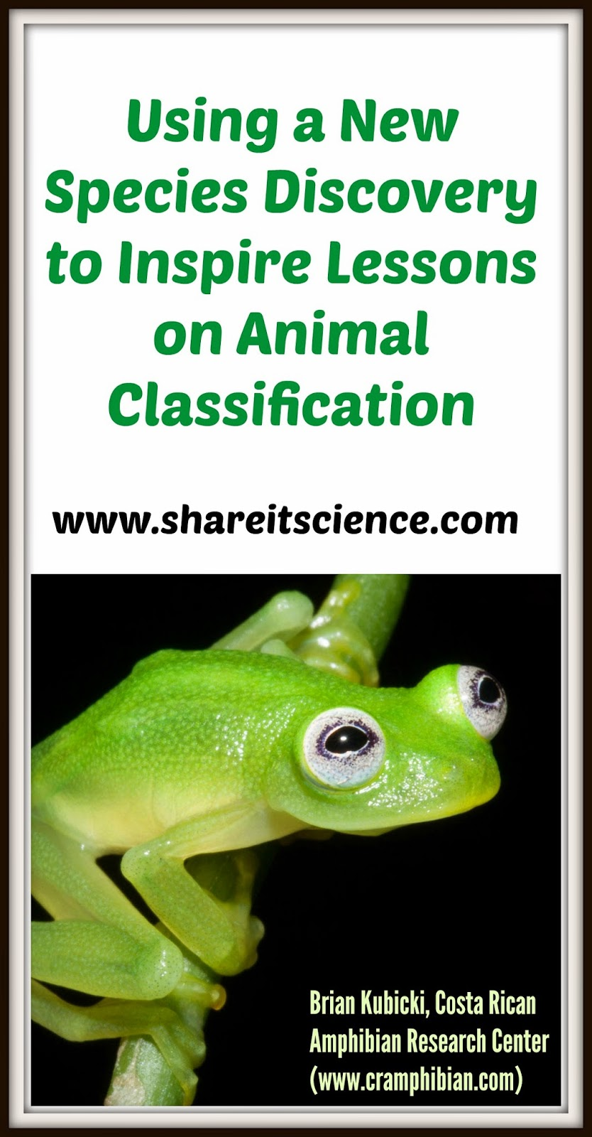 Share It Science RealLife Kermit Inspires Animal - Real life kermit the frog discovered in costa rica