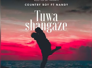 Download Audio: Country Boy Ft. Nandy - Tuwashangaze | Mp3 | New Song 2019