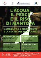 L'acqua, il pesce e il riso di Mantova