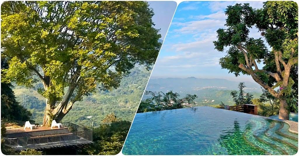 隱身東山的祕密仙境|360度環景發呆亭×山頂無邊際泳池|仙湖農場