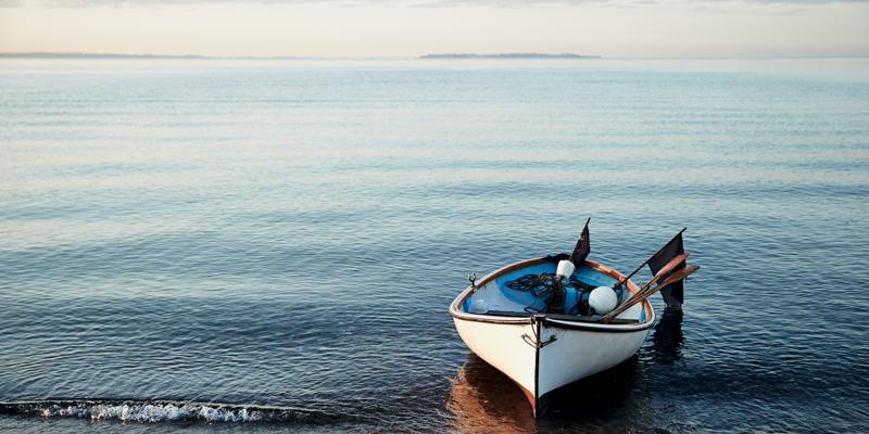 Gone Fishing, Stegt hornfisk, Mikkel Karstad, Anders Schønnemann
