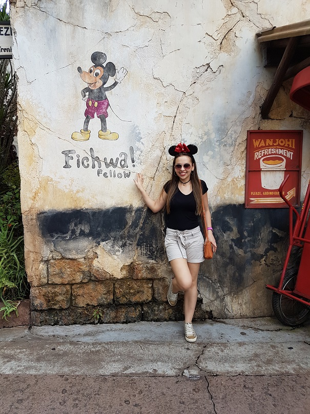 fichwa-fellow-disney