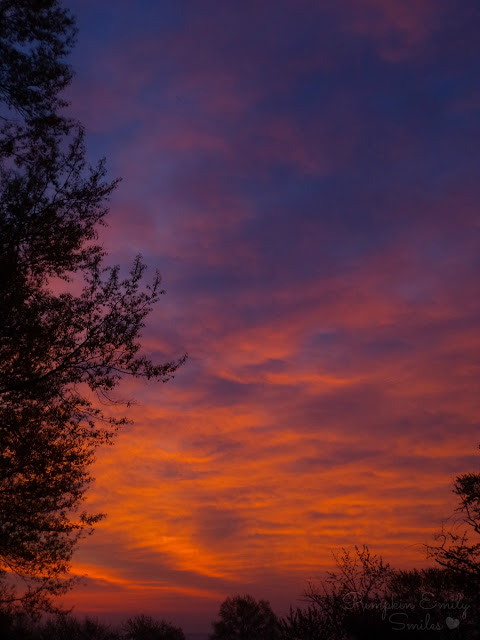 A beautiful sunrise with pink, orange, and blueish purple colors