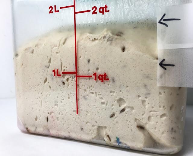 Rye Bread Bulk Proof