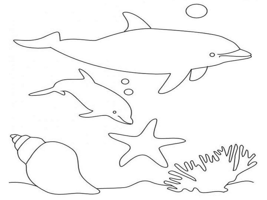 Dolphins Coloring Pages Realistic