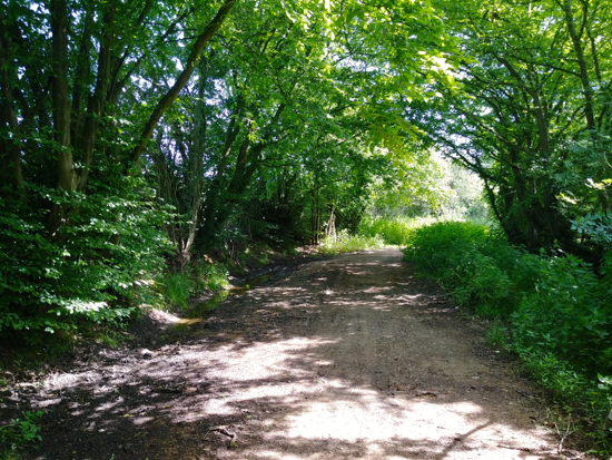 Photograph of The restricted part of the byway along Foxes Lane running from Welham Green to Bulls Lane Image by Hertfordshire Walker released under Creative Commons BY-NC-SA 4.0