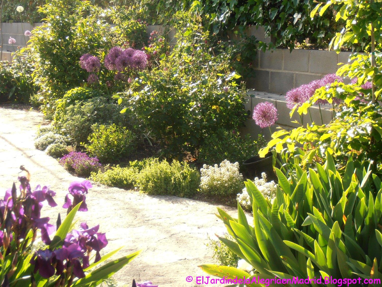El jard n de la alegr a a contraluz for Cancion el jardin de la alegria