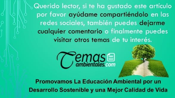 promovamos la educacion ambiental