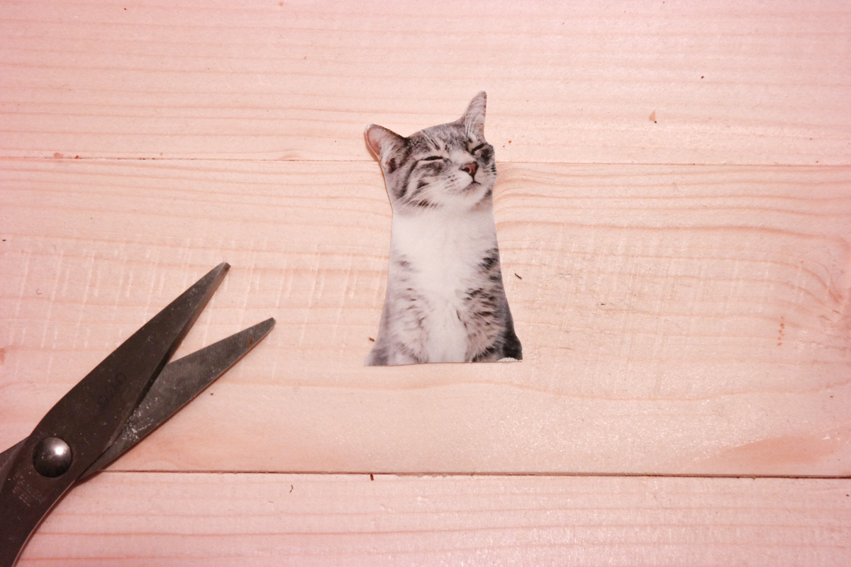 Meerjungfrau-Katze selber machen 3