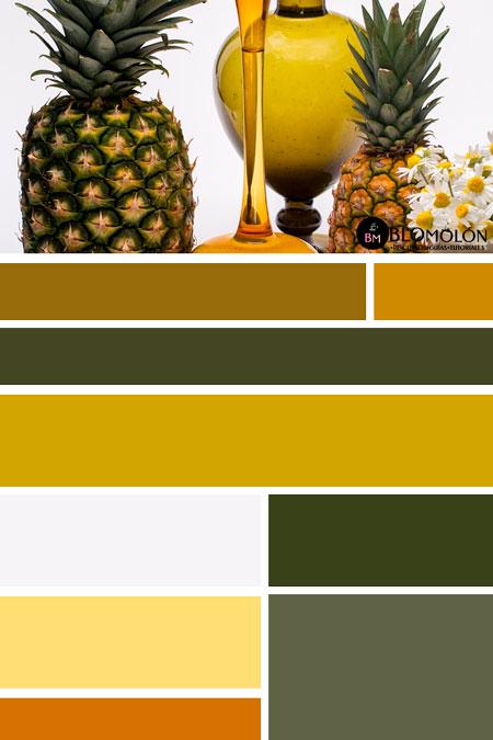 paletas_de_colores_mes_de_junio 3