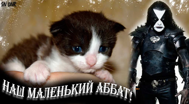 Аббат Immortal