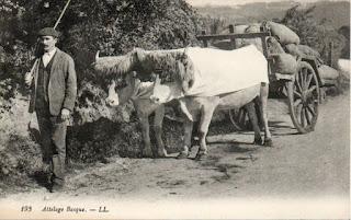 agriculture basque