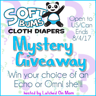 SoftBums Mystery Diaper Giveaway 8/4