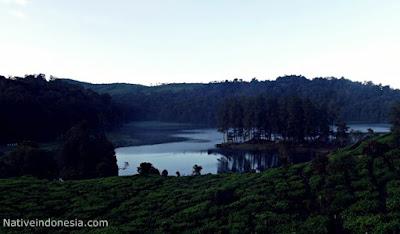 objek wisata situ petegang salah satu objek wisata yang sangat kaya dengan alam sekitar