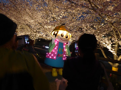打上川治水緑地 桜のライトアップ はちかづきちゃん
