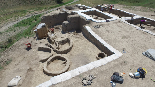 Archaeologists find earliest evidence of winemaking