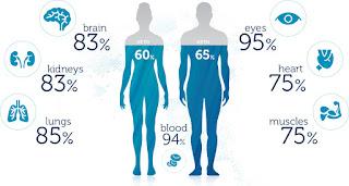 persentase kebutuhan air minum yang dibutuhkan untuk tubuh - Le Minerale