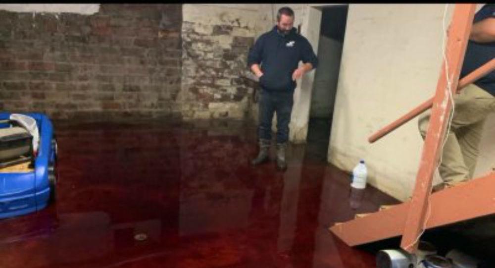 Το υπόγειο του τρόμου: Οικογένεια βρήκε την αποθήκη της πλημμυρισμένη αίμα - Βίντεο