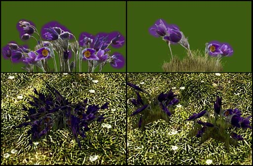 Making more plants for skyrim part i re texturing hoddminir keep the flowers and background color in separate layers for now i painted the background in a shade of green and another color matching the flowers mightylinksfo Images