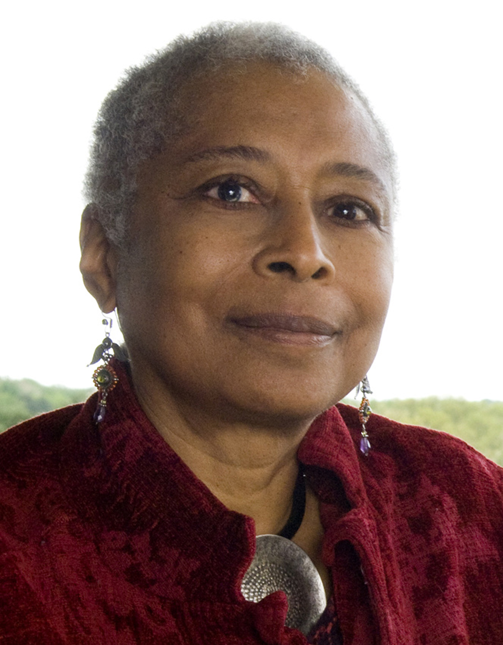 Alice Walker's Looking for Zora and Zora Neale Hurston - Essay Example
