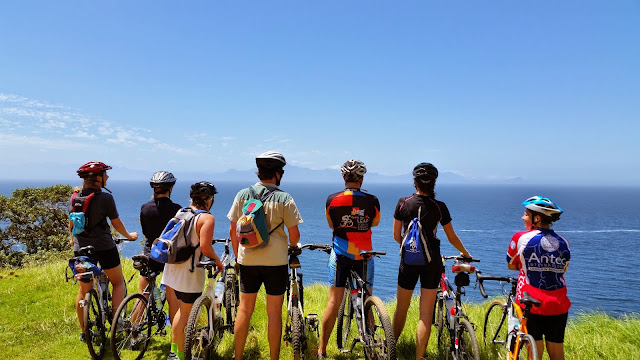 Cyclists admiring sea view