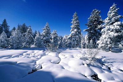 Kumpulan Contoh Puisi Natal yang Menyentuh Hati dan Sangat Indah Sekali Mendamaikan Jiwa
