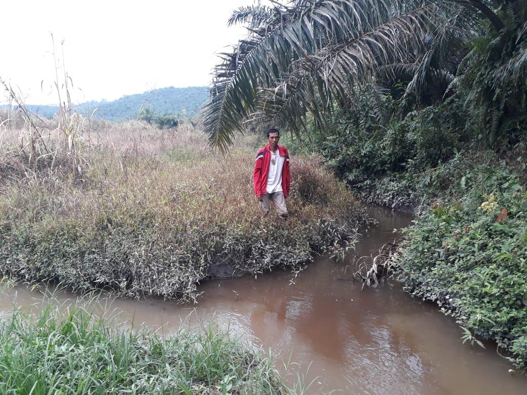 Petani padi sawah di Palas tunjukkan saluran irigasi yang perlu diperbaiki