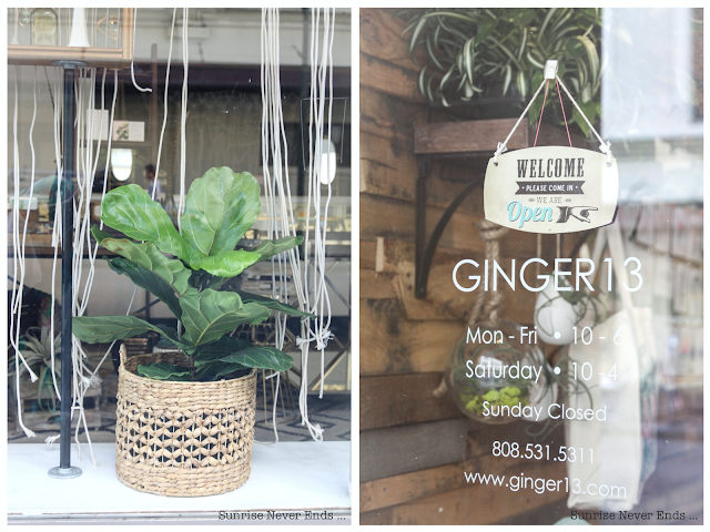 ginger 13,hawaii,oahu,honolulu,chinatown,concept-store,bijoux,travel guide,city guide