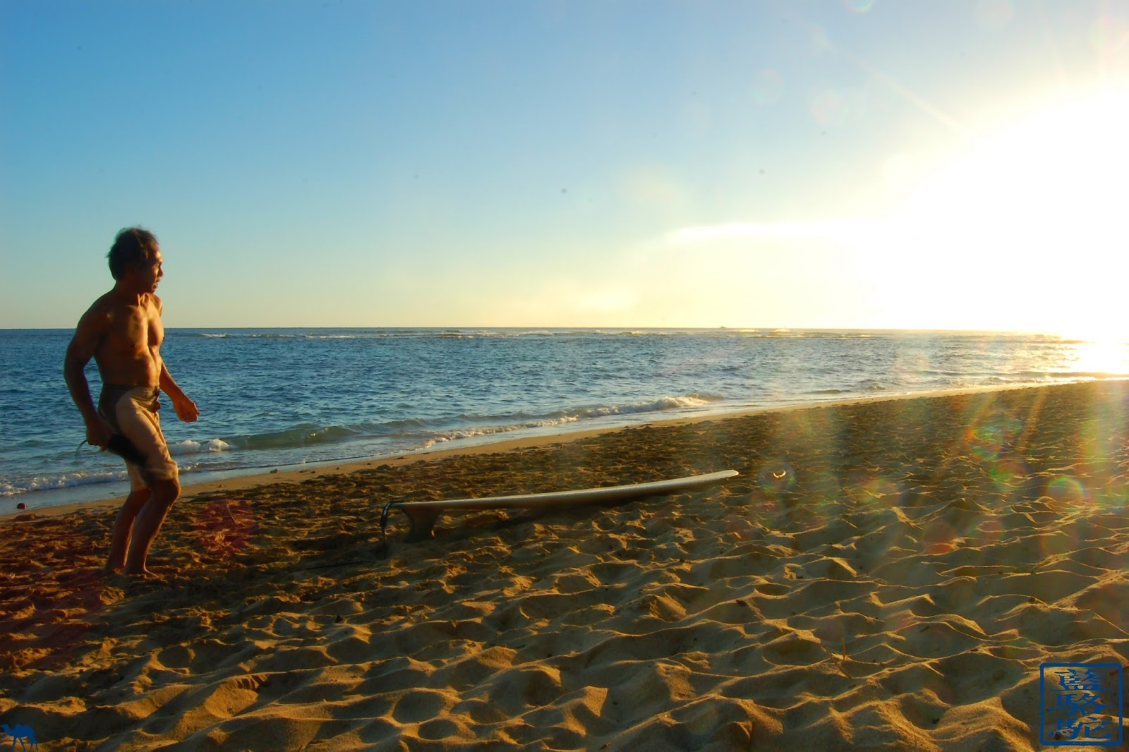 Le Chameau Bleu - Instantanés d'Hawaii - OAHU