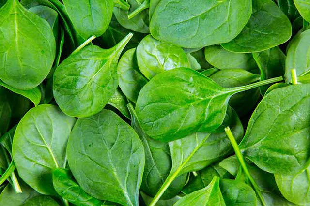 Spinach: Benefits, Facts and Nutritional values