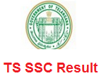 Telangana Board SSC Result 2016