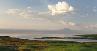 Tanzania-Lago-Natron