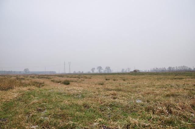 grodzisko pawłowice koło jeziora małego kierskiego